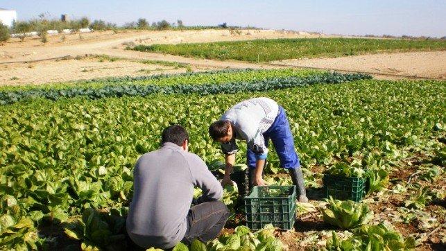 Acuerdo agroalimentario entre Asturias y República Dominicana.