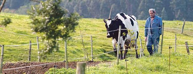 Sector agrícola Asturias.