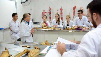 La Facultad de Medicina de la Universidad de Sao Paulo destaca como la mejor de la región latinoamericana en el ranking de Shanghai.