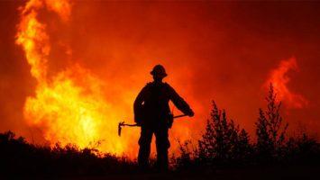 Los incendios forestales generan unas pérdidas valoradas en, al menos, 1.800 millones de euros.