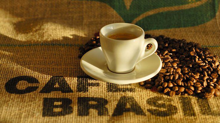 La Unión Europea ha importado 840.000 toneladas de café provenientes de Brasil.