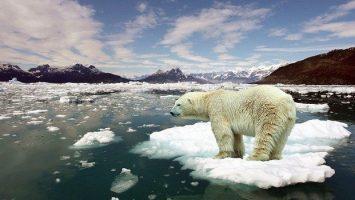 EMpresas no combaten el cambio climatico