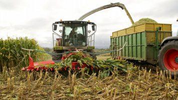 agricultura española