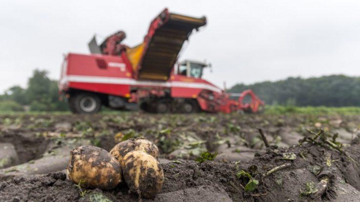 Asaja Andalucía alerta de la baja mano de obra para las cosechas