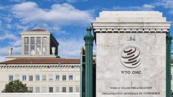 OMC: el peor escenario es una caída del 8,8% del PIB mundial