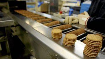 sector industria alimentación