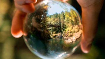 sostenibilidad medioambiental
